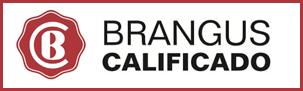 Calificación Brangus Logo