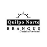 Quilpo Norte