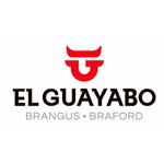 LOGO-CABAÑA-EL-GUAYABO