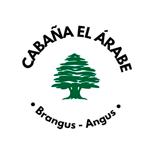 El-Árabe